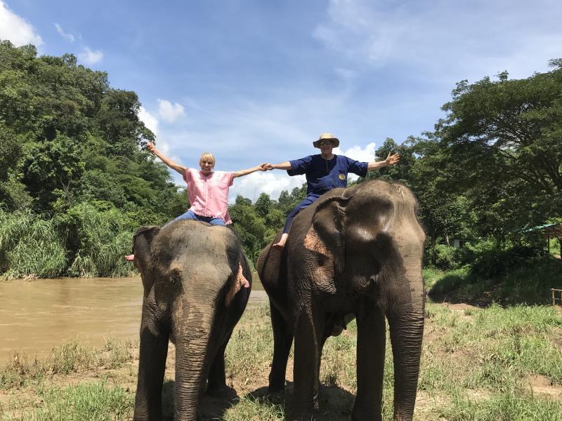 1 DAY Elephant + Long Neck Village + Buatong Sticky Waterfall.