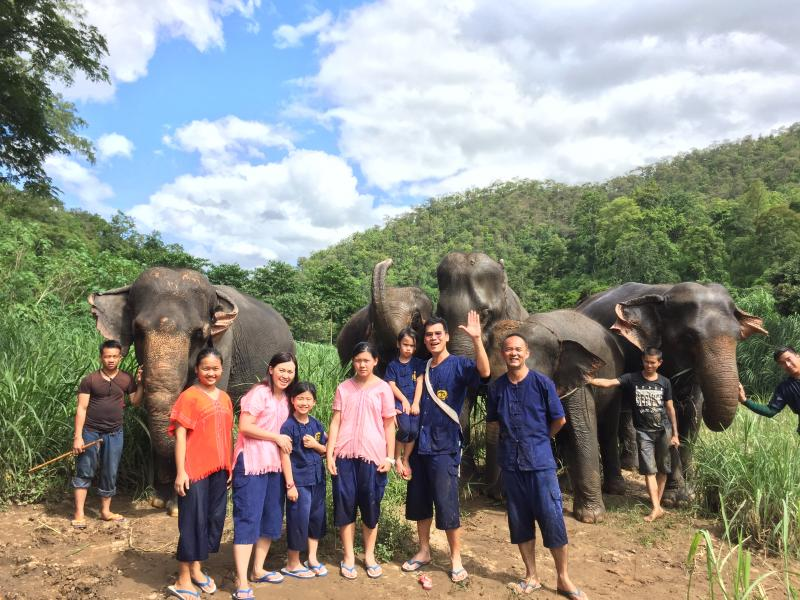 Discover 2 Day : Elephant + waterfall + Chinese clay house +  Pai District.