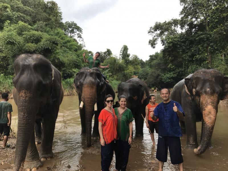 1 Day Elephant + Zipline Chiang Mai + Orchid Farm.